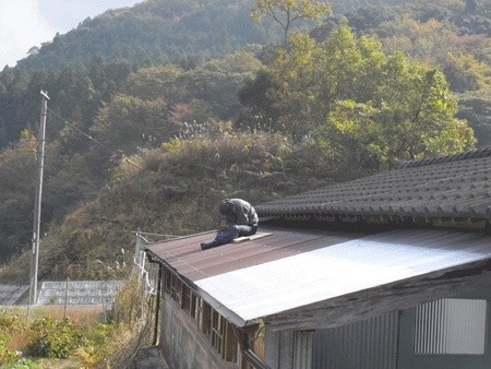 20121111-072708.jpg